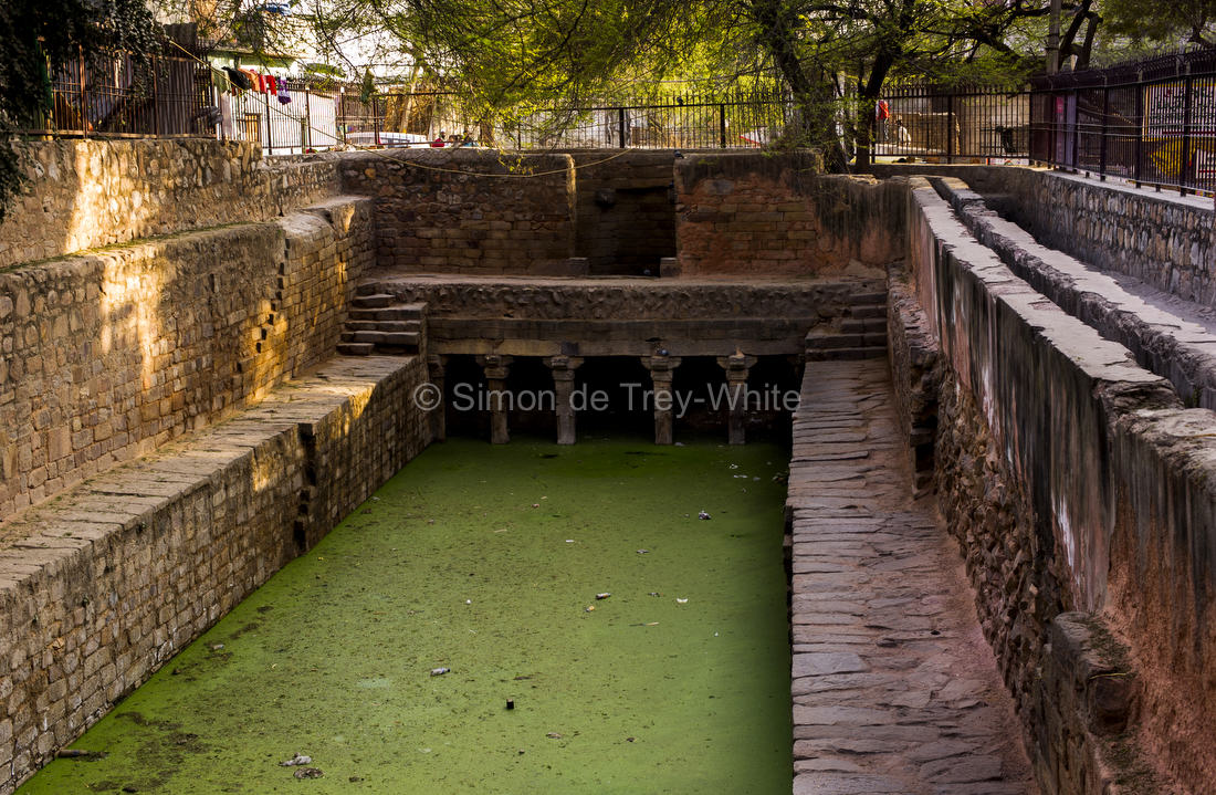 After de-silting the Gandhak Ki Baoli in Mehrauli has more water in it than I've ever seen