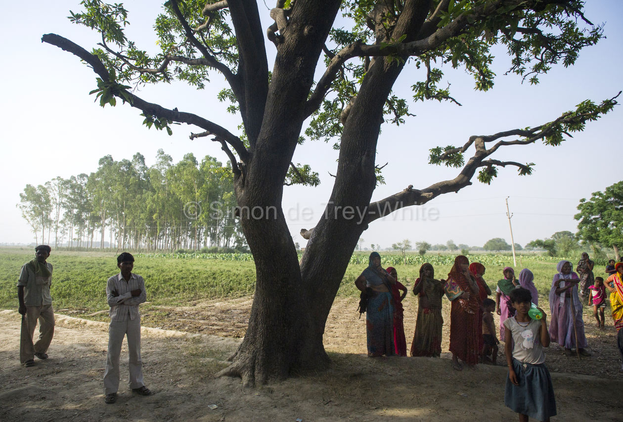 A small group of women stand vigil beneath the mango tree from which the girls were hanged
