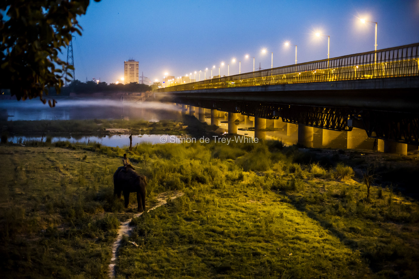 An image form my documentary project 'Delhi's Last Urban Elephant's' as featured on my new website